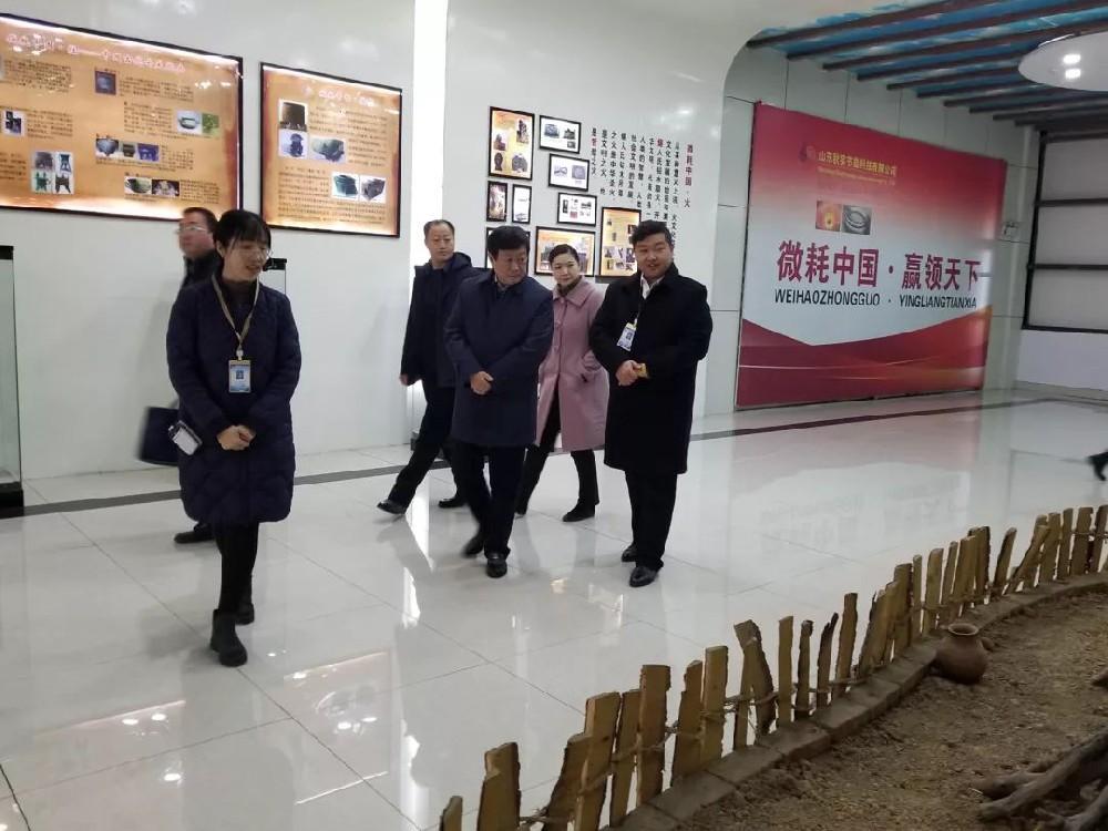 泰安市商务局党组书记、局长王志翔一行到公司考察调研